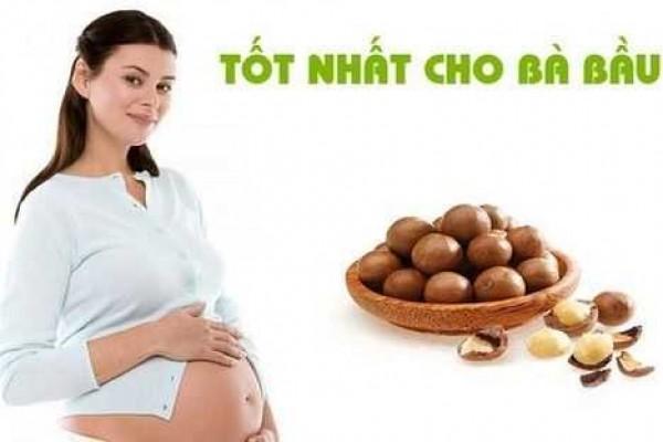 Cách sử dụng hạt Mắc Ca cho bà bầu, tác dụng hạt mắc ca cho bà bầu